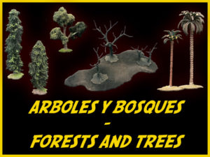 ARBOLES, BOSQUES / FORESTS, TREES