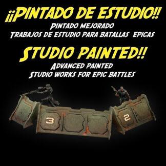 Pintado avanzado / Pro painted series